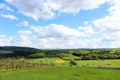 landschaft_m_240px